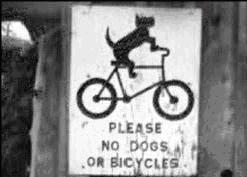No Dogs or Bicycles !